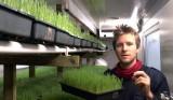 Online now! Sprout farmer DarraghFlynn