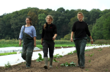 Video now online! Tuinderij De Stroom, The Netherlands: Growing strong through collaboration!