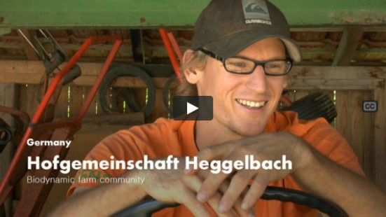 Heggelbach video cover_02